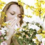 Весенняя аллергия: как выжить в сезон пыльцы