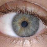 «Умный гель» поможет восстановить глаза без операции