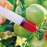 Эксперты назвали продукты с самым высоким содержанием пестицидов