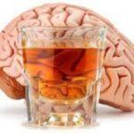 Эксперты раскрыли, сколько времени алкоголь воздействует на мозг